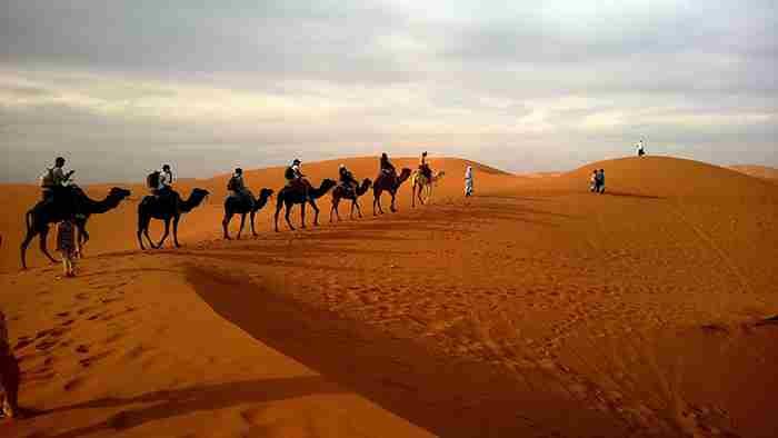 اولین پارک ملی دبی