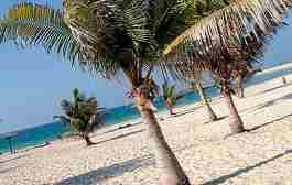 پارک ساحلی ال ممزر دبی - Al Mamzar Beach Park