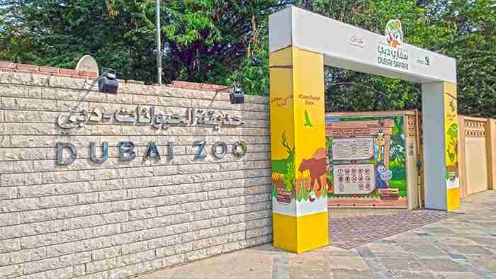 باغ وحش دبی
