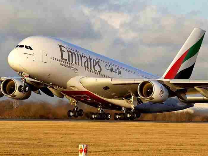 مار کبری پرواز خطوط هوایی امارات را مختل کرد