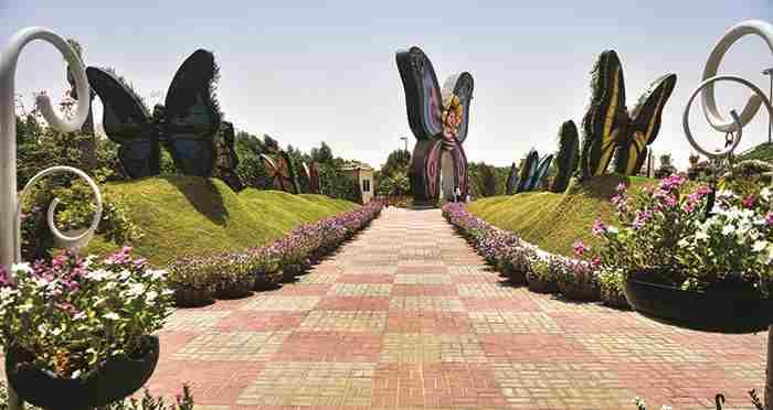 افتتاح بزرگترین پارک پروانه ها در دبی