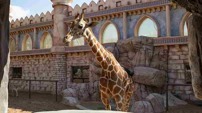 پارک باغ وحش امارات