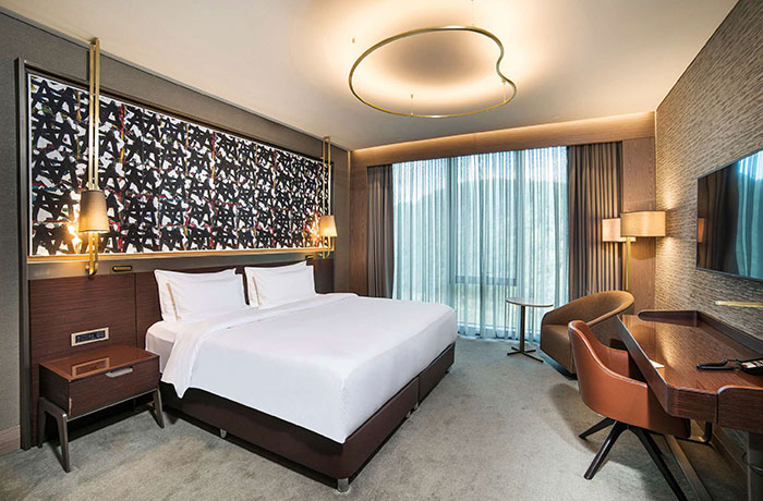 هتل رادیسون بلو وادیستامبول